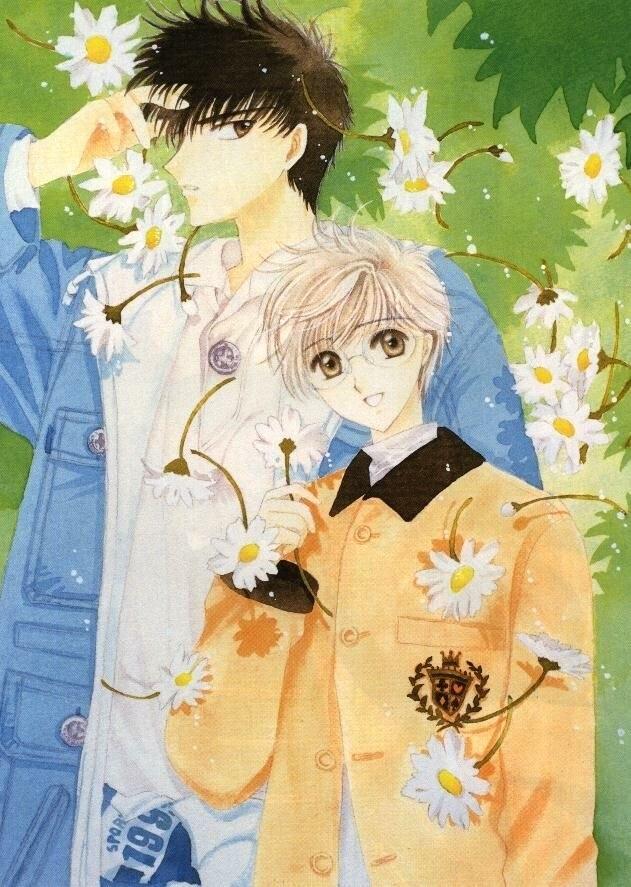 Touya-and-Yukito-touya-and-yukito-7651068-631-887